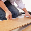 Laying laminate flooring - closeup — Stock Photo #19061607