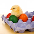 Royalty-Free Stock Photo: Small chicken with easter eggs