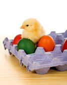 Small chicken with easter eggs — Stock Photo