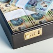 Romanian currency in a briefcase — Stock Photo