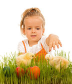 Little girl reaching for the eatser eggs and little chickens — Foto de Stock