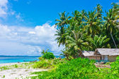 Tropical island landscape with huts — Stock Photo