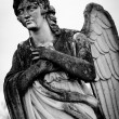Stock Photo: Guardian angel