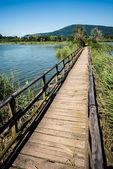 Sebino peat bog, Lombardy, Italy — Stock Photo