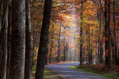 Autumn drive — Stock Photo