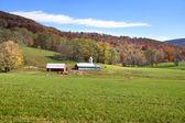 Farm scene — Stock Photo