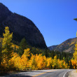 Stock Photo: Autumn landscape and road