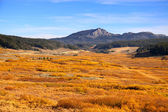 Autumn in Wyoming — Stock Photo