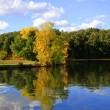 Reflection of autumn trees — Stock Photo