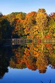 Autumn reflection — Stock Photo