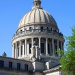 Mississippi Capital — Stock Photo #14396249