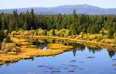 Yellowstone rivier — Stockfoto