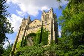 美国密歇根大学 — 图库照片