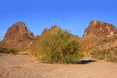 Red rock mountains — Stock Photo