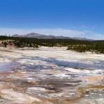 Norris geyser basin — Stock Photo #16996695