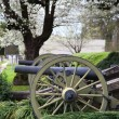 Stock Photo: Two canons