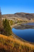 Beautiful Yellowstone — Stock Photo