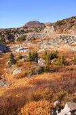 Ruige landschap — Stockfoto