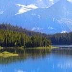 Many Glaciers park — Stock Photo #27151373