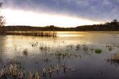 Sun raise over Lake — Stock Photo