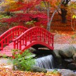 japanese garden&quot — Stock Photo