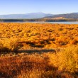 Wyoming Autumn — Stock Photo