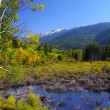 Stock Photo: Aspen Colorado