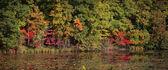Early autumn panorama — Fotografia Stock