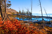 Lake Yellowstone — Stock Photo