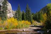Autumn in Colorado — Stock Photo
