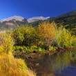 Colorado autumn — Stock Photo #33174791