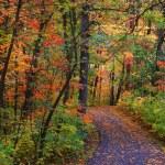 Scenic bike trail — Stock Photo