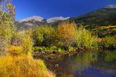 Outono de colorado — Foto Stock