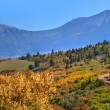 Colorado in Autumn — Stock Photo