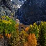 Autumn in San Juan mountains — Stock Photo #34203705
