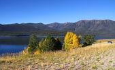 Hebgen lake — Stock Photo