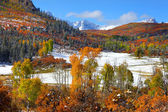Early snow at Dallas divide — Stock Photo