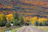 Rural drive — Stock Photo