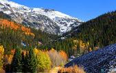 Beautiful autumn scene — Stock Photo