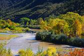 Scenic Gunnison river — Stock Photo