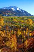 Kebler pass landscape — Stock Photo