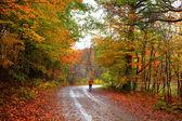 Autumn walk way — Stock Photo