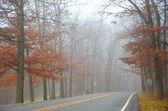 Późno jesienne mgły — Zdjęcie stockowe