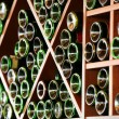 Stockfoto: Wine racks