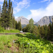 Scenic by way Going to sun road — Stock Photo #42262155