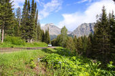 Scenic by way Going to sun road — Stock Photo