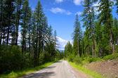 Terug wegen in montana — Stockfoto
