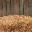 Hay bale — Stock Photo #12632585