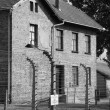 Barrack at Auschwitz — Stock Photo #13131094