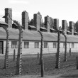 Stock Photo: Barracks at Auschwitz